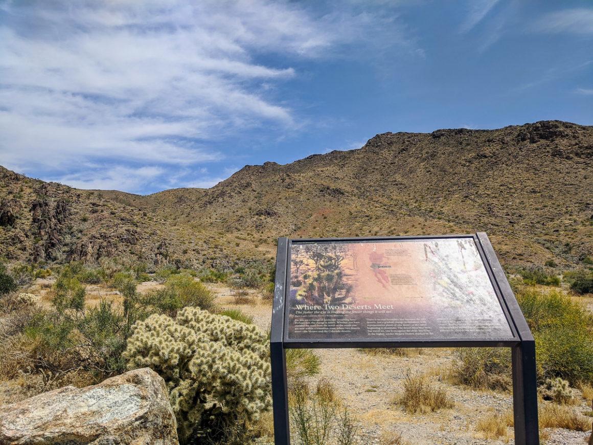 interpretive sign at Joshua Tree National Park