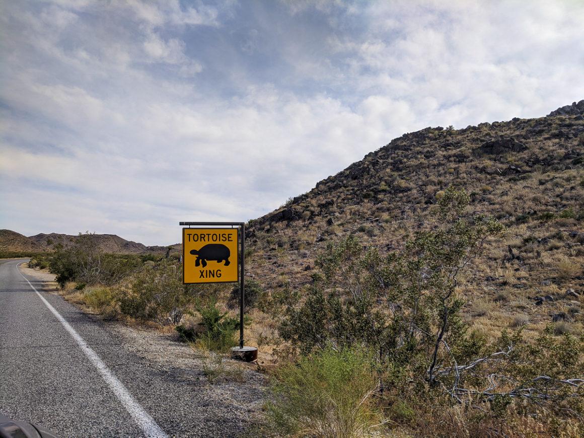 tortoise crossing sign in Joshua Tree National Park