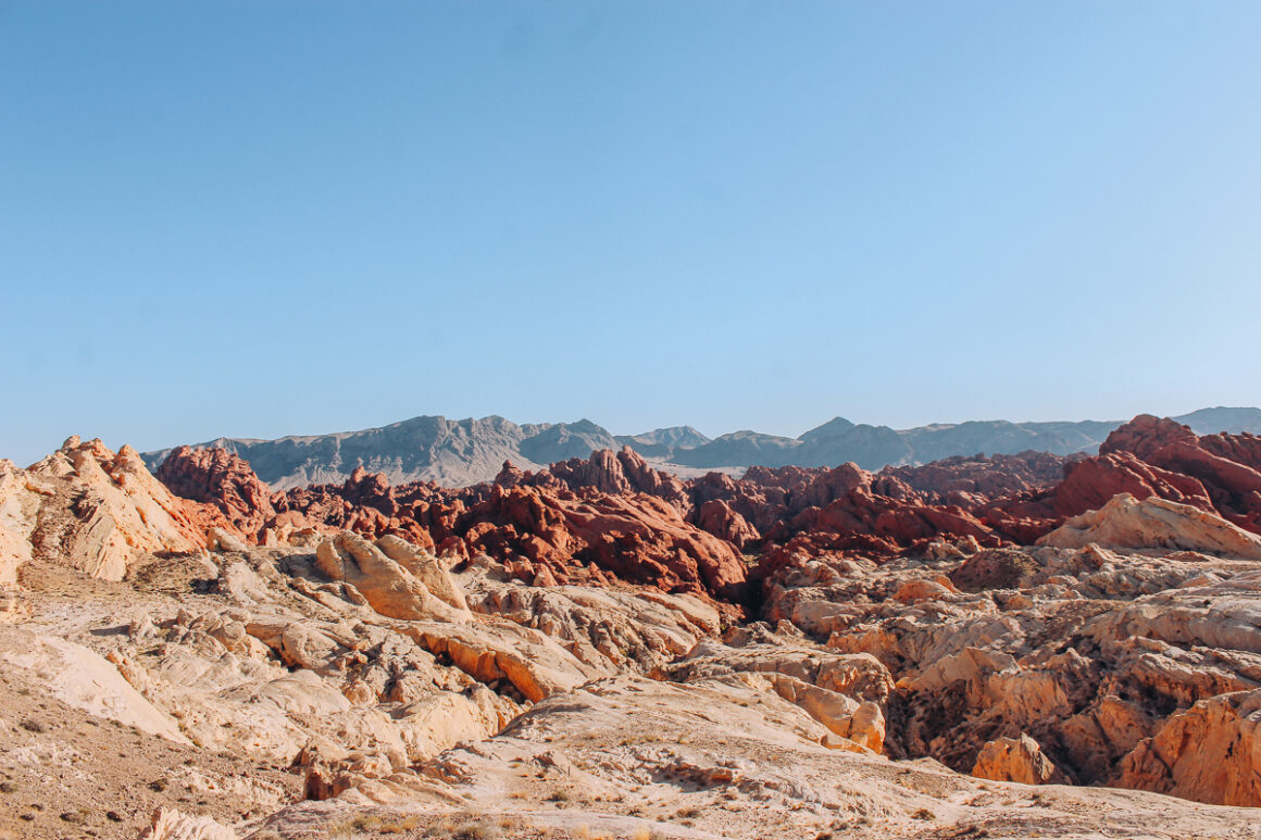 The many colors and textures in Valley of Fire