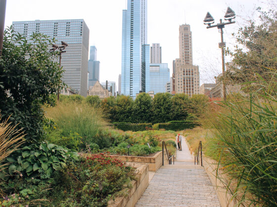 Lurey Gardens and fall in Chicago