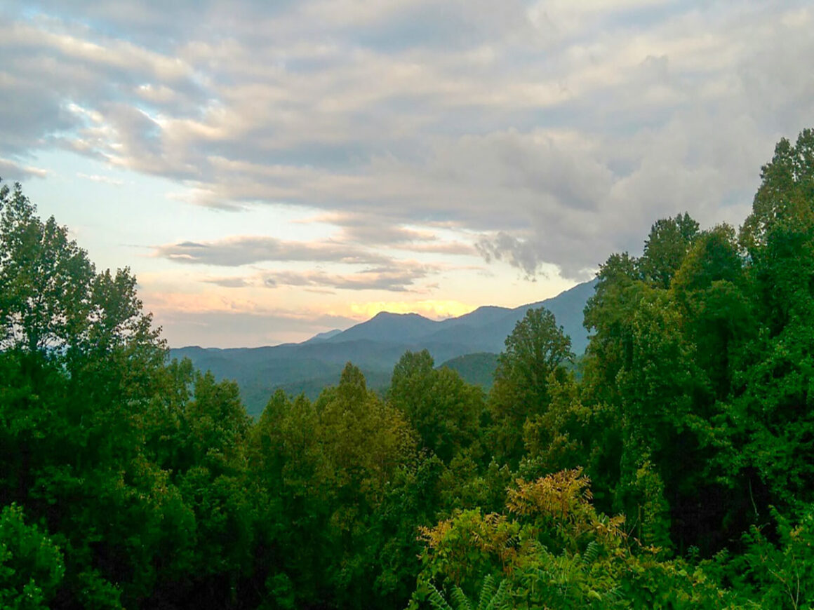 a view of the mountains at Great Smoky Mountains National Park