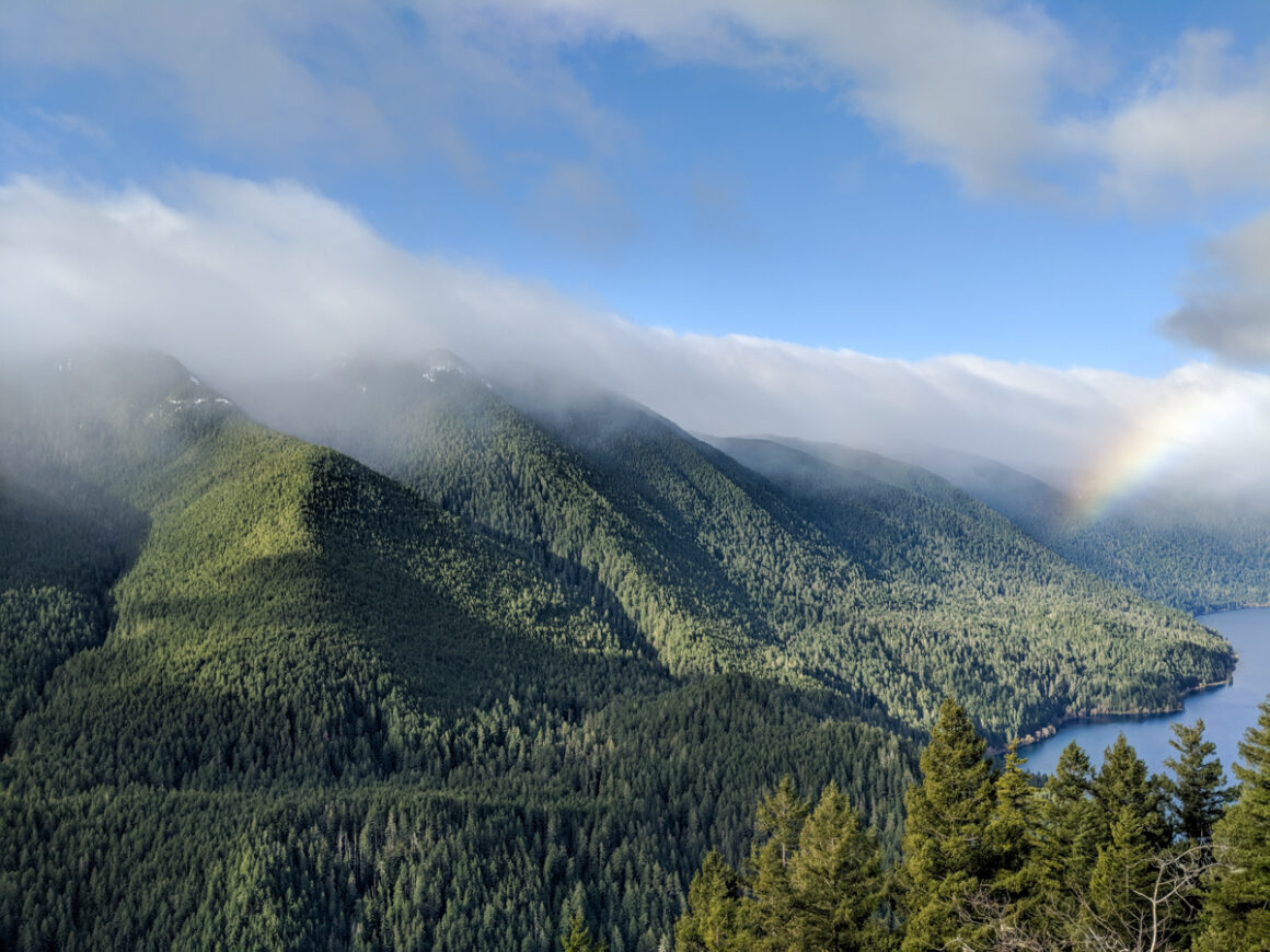 a view of the mountains in Olympic National Park